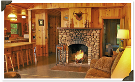 Fire place home