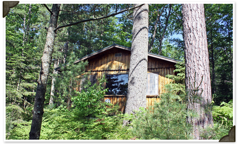 Eagle's Nest 2-Bedroom Cabin